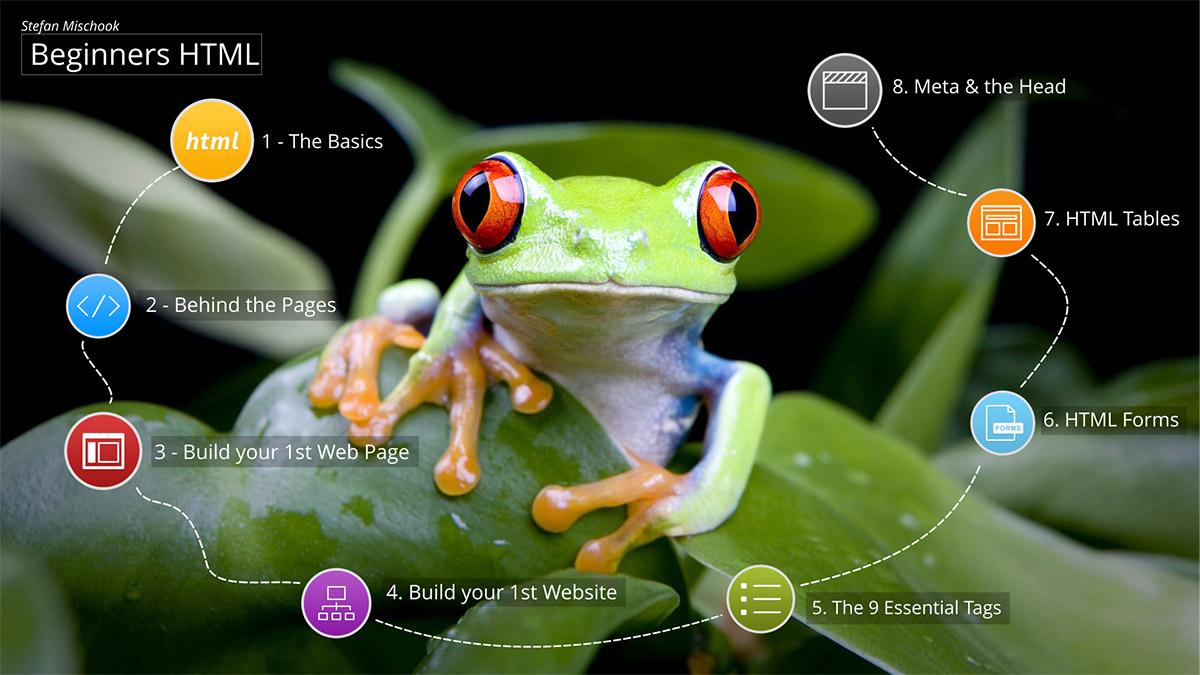 Stefan Mischook's Interactive Web Developer Course